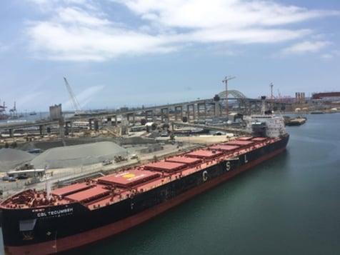 Orca_Long Beach